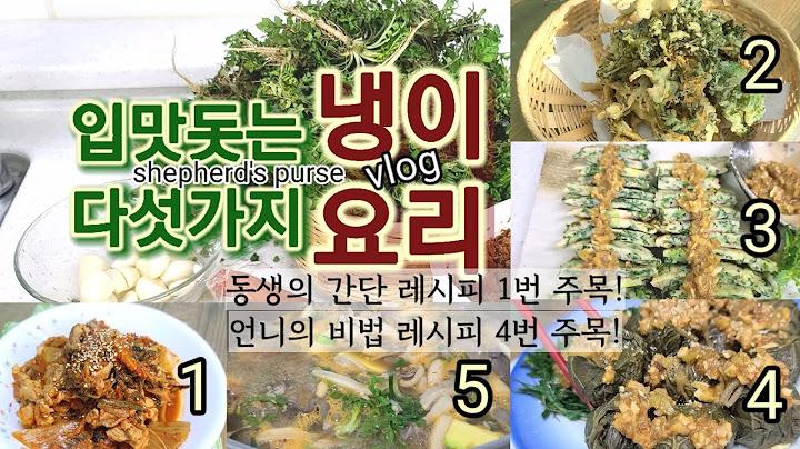 냉이 요리 5 레시피 김치 냉이 두루치기 냉이튀김 냉이전 쌈장 된장소스 & 곰취 장아찌 쌈밥 된장찌게 [달공장] vlog 한식 된장소스 korean hansic recipe 봄요리