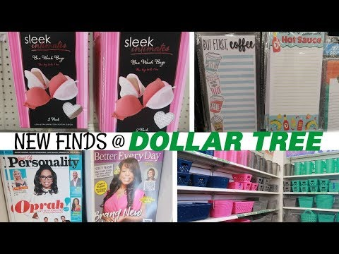 DOLLAR TREE * NEW FINDS!!!! COME WITH ME 6-20-19