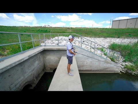 Catching Fish in HIDDEN DRAIN!?!?