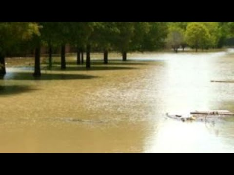 Harvey's Floodwaters Harbor Many Health Risks