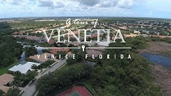 Venetia | Homes for Sale | Venice FL