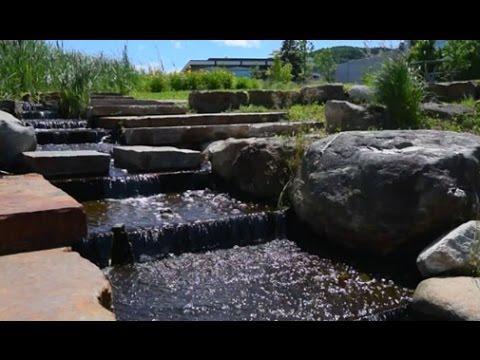 L'Université de Sherbrooke : un laboratoire de développement durable