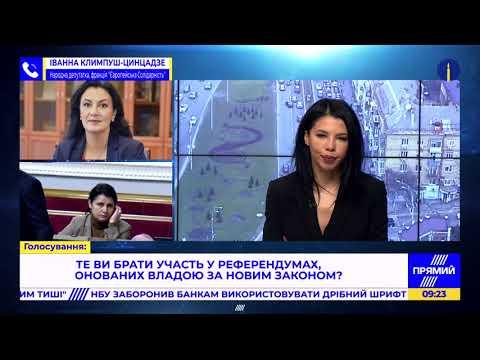 """""""ЄС"""" готуватиме подання до КСУ для визнання закону про референдум неконституційним- Климпуш-Цинцадзе"""