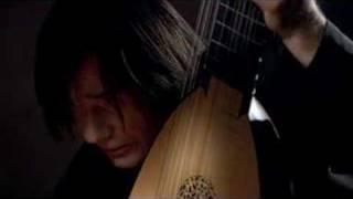 Edin Karamazov (Lute) - John Dowland Forlorn Hope Fancy