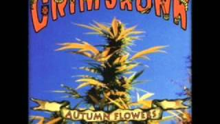 Watch Grimskunk Camptown Lady video