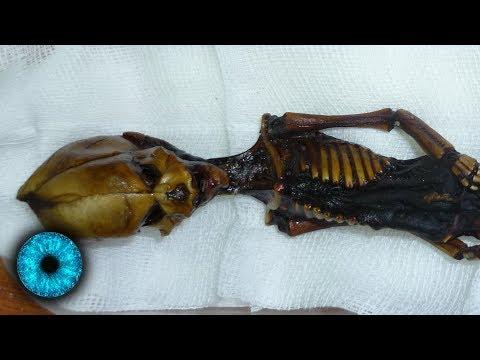 Geheimnis der Alien-Mumie gelüftet - Clixoom Science & Fiction