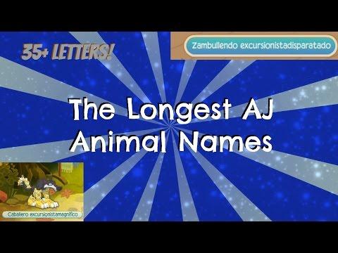 [Animal Jam] 35 Letter Animal Names!