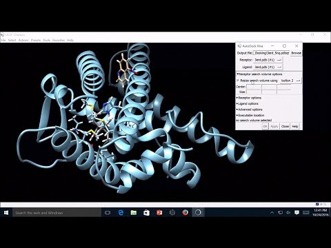 How to Study Protein-Ligand Interaction through Molecular Do