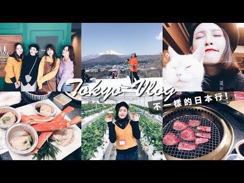 不一樣的日本行!輕井澤滑雪、草莓吃到飽、貓咪咖啡廳 Tokyo Vlog|黃小米Mii