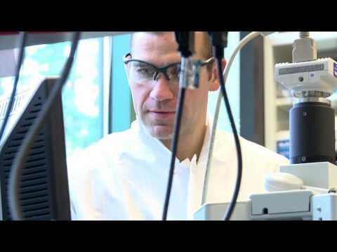 Seattle Genetics Announces FDA Regular Approval of ADCETRIS® (Brentuximab Vedotin)  ...