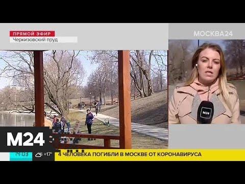 Жители Москвы выходят на отдых в открытые городские парки - Москва 24