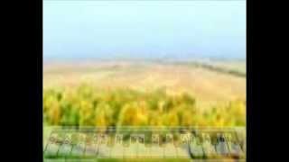 Уроки Музыки БЕЛЕЦКОГО Учим песни без нот Полюшко поле