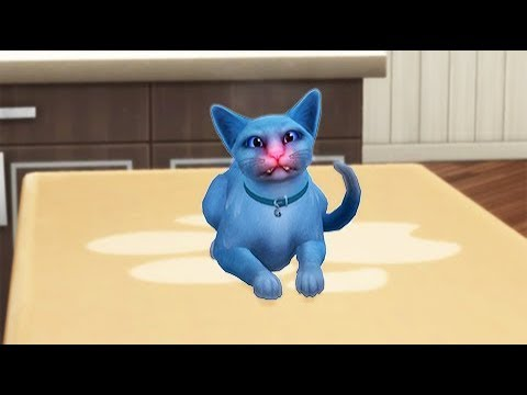 The Sims 4 Cats and Dogs PART 2: Vet Behavior