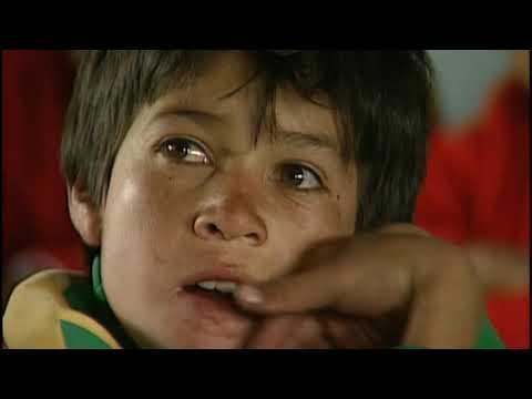 Child Labor In Colombia's Coal Mines