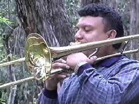 Instrumentos Musicales de Colombia-Trombon de vara