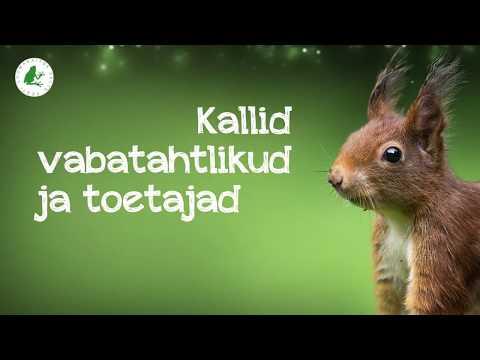 Eesti Loomakaitse Seltsi tänuklipp 2017