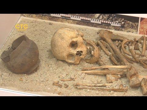 Детективная история из бронзового века