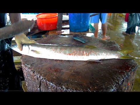 barakuda-fish-cutting-|-fish-cutting-skills