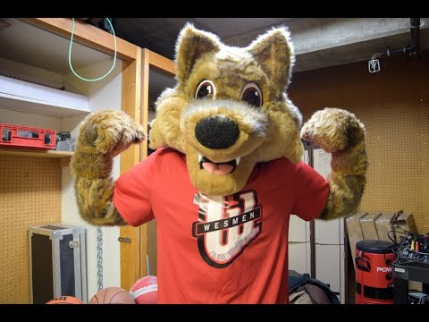 New Wes Lee coyote one nimble and happy mascot | University of ...