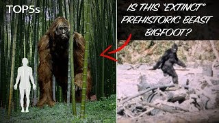 5 Biggest & Scariest Animals You're Glad Are Now Extinct...