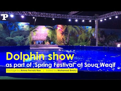 Dolphin show as part of the 'Spring Festival' at Souq Waqif