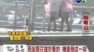 陽明山風雨刮人 文化大學停課
