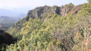 2010年11月6日鹿嵐山登山 紅葉はじめ。万里の長城といわれるだけあって...