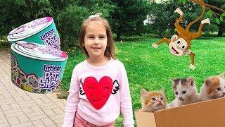 Новые игрушки Алины Littles Pet Shop Ищем КОТЯТ Pretend play with toys