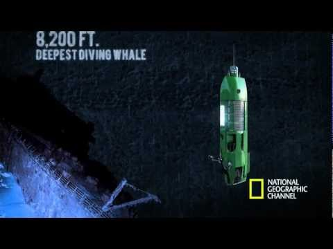 The Life Aquatic with James Cameron - Mariana Trench Dive