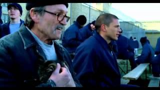 prison break dublada A SERIE