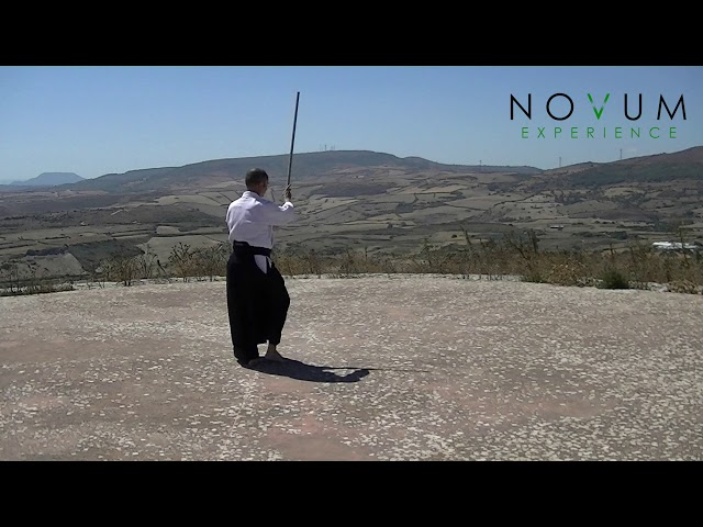08 Menuchi gedan gaeshi- Aikido Novum Experience- Jo Suburi Nijuppon-  面打ち下段返し -合気道 杖素振り20本 -打ち込み 5本