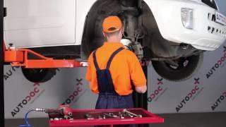 Fjerner Stabilisatorarm TOYOTA - videovejledning