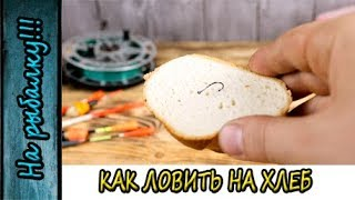 Как ловить на хлеб,как насаживать и что ловится на эту наживку