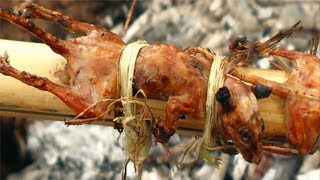 Chuột Đồng Quay Ống Tre .Thử Thách Ăn Chuột Đồng Nướng .Sinh Tồn Trong Rừng .Bamboo grilled Rats