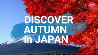Immerse your senses in autumn of Japan (30 sec.)
