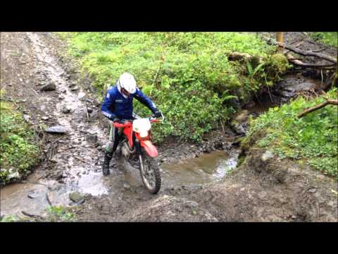 The boys are back at Trail Riding UK