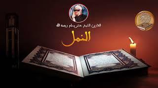 الشيخ عنتر مسلم سورة النمل روعة