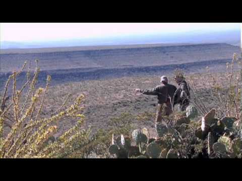 Texas: Pronghorn - Boone And Crockett Country