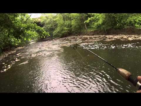 Short Fishing Session At The Pennypack Creek (Northeast Philadelphia, PA)