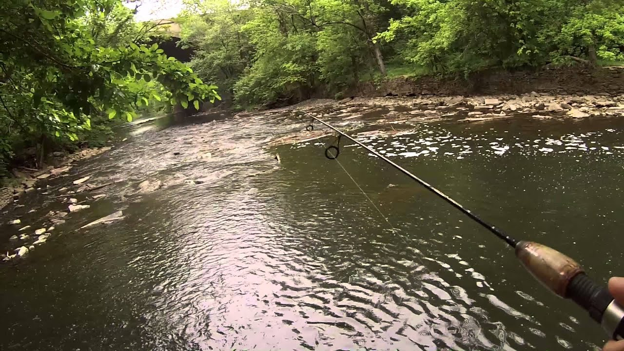 Short fishing session at the pennypack creek northeast for Extreme philly fishing