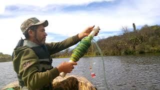 30 tilapias de un tarrayaso pesca con chuy