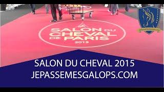 Video Reportage Salon du cheval 2015 à Paris Villepinte download MP3, 3GP, MP4, WEBM, AVI, FLV Oktober 2018