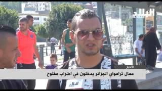 عمال ترامواي الجزائر يدخلون في اضراب مفتوح  -elbilad tv -
