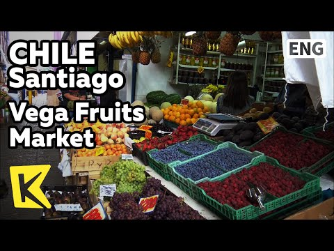 【K】Chile Travel-Santiago[칠레 여행-산티아고]베가 과일 시장/Vega/Market/Fruits/Andes