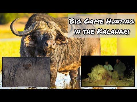 Lion Hunt (FULL LENGHT) with Lew Harris Safaris