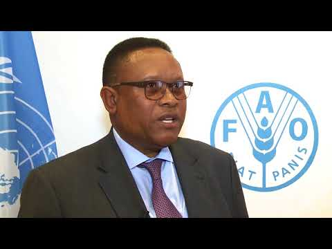 Namibia's Minister For Fisheries At FAO