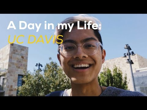 A DAY IN MY LIFE: UC DAVIS