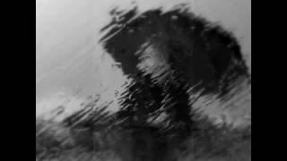 Yann Tiersen, Le Parapluie