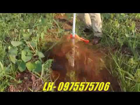 Máy xạc cỏ cầm tay - YouTube