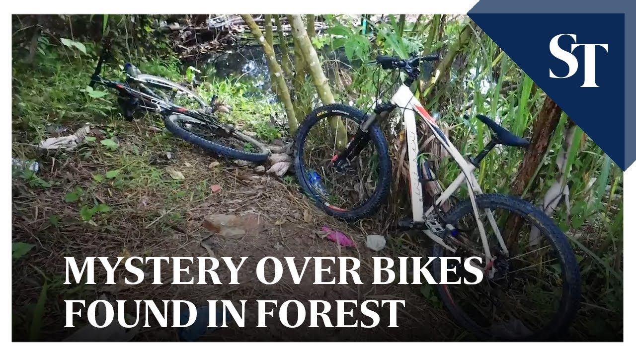 Mystery over bikes found in forest | The Straits Times